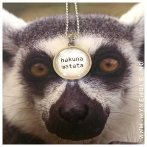 Bilde av WORDS, «hakuna matata»